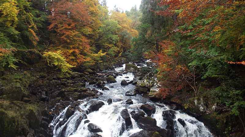 Hermitage Waterfall, Perthshire - visit on our Grand Tour of Scotland